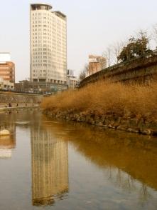 Seoul (Cheonggyecheon Stream) 2012