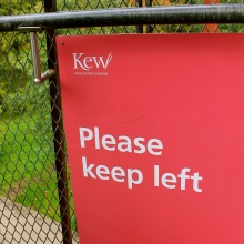 Vicious packs of Keep Left signs run me ragged in Britain
