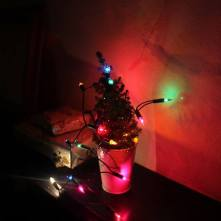 Our pathetically small Charlie Brown tree
