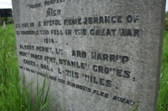 Six Grandsons who fell in the Great War