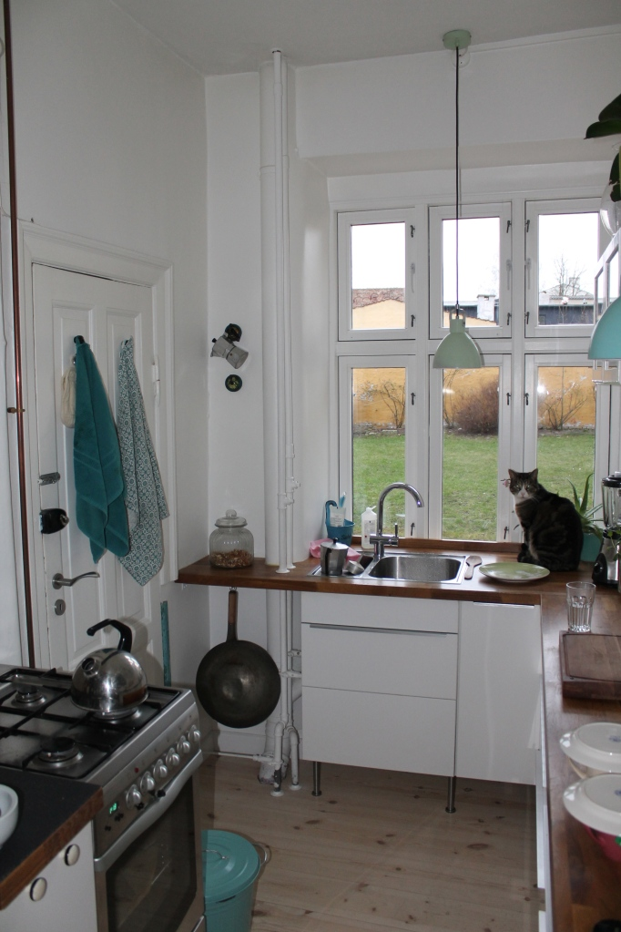 Dream kitchen, complete with kitty!