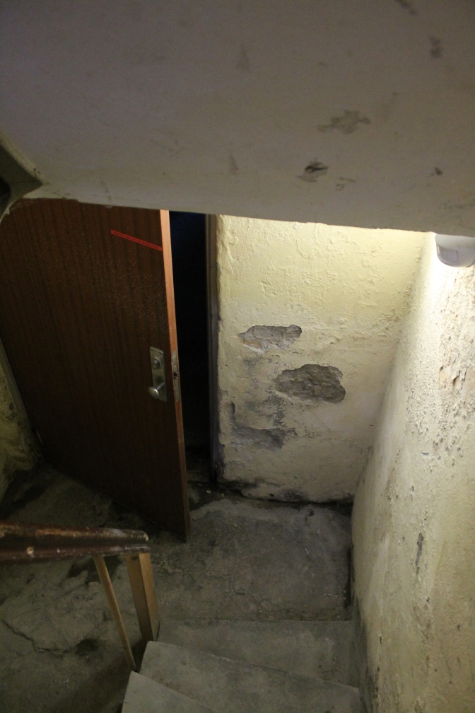Into the basement…