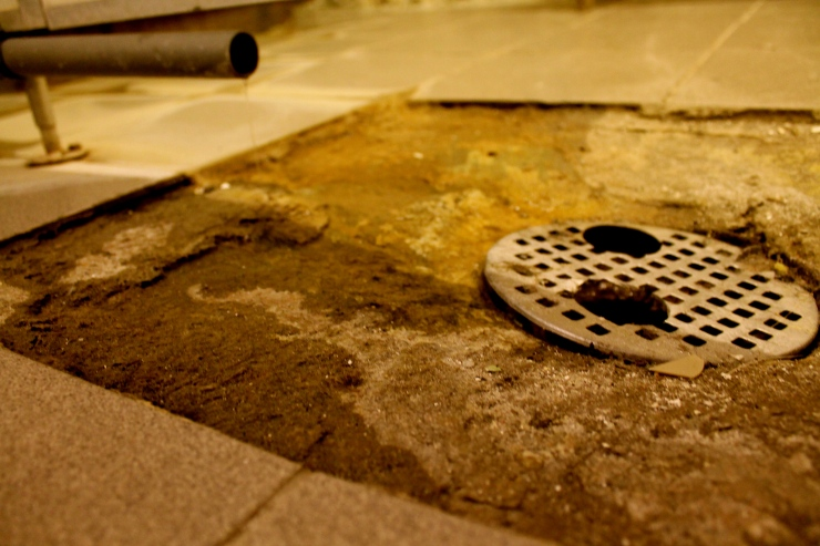 The shower drain!