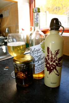 A cocktail, with infused gin, elderflower cordial, and my makeshift shaker