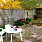 Garden Progress!