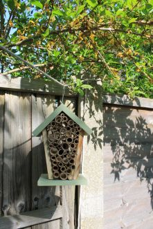 New solitary bee home!