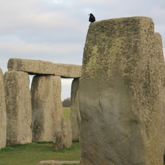 Crows sat on the stones a lot.