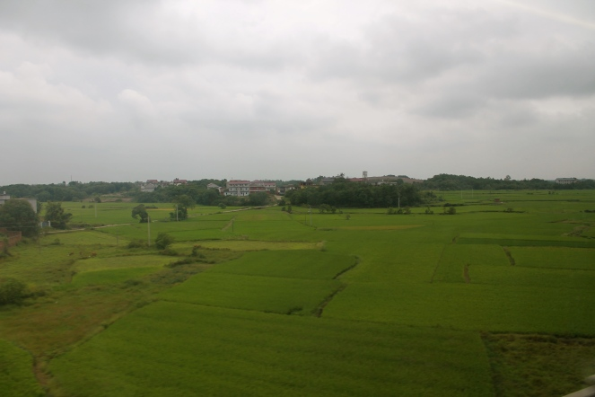 Beautiful farmland, the majority of what we saw on the trip.