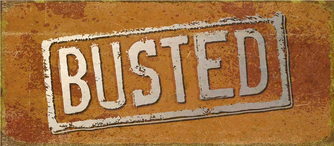 Image result for busted mythbusters