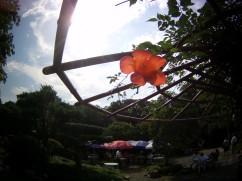 Guilin Garden