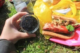 Black caviar on a hot dog