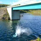 Sometimes You Just Gotta Jump Off A Bridge in Iceland